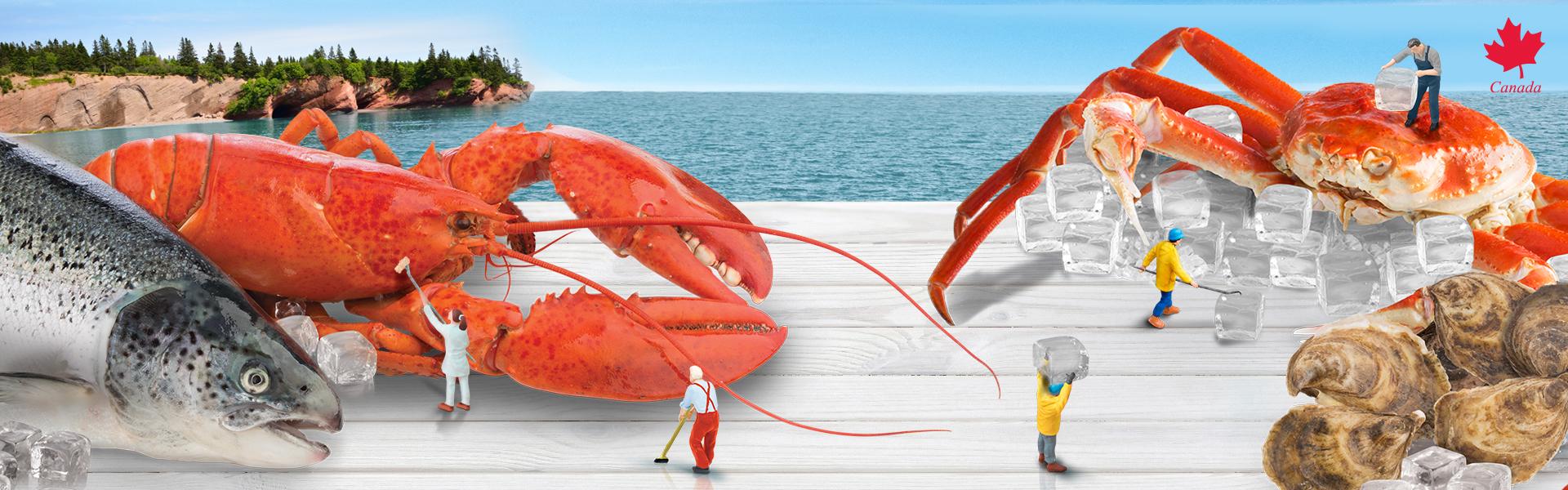 Digital B2B Networking Seafood Event New Brunswick Canada
